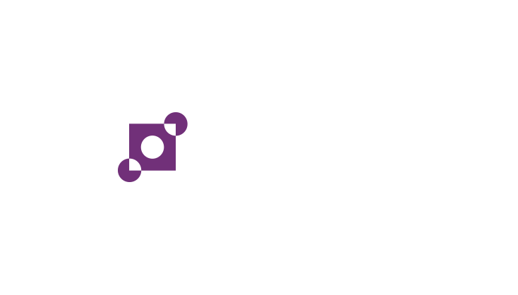 Punt & Partners Automatisering